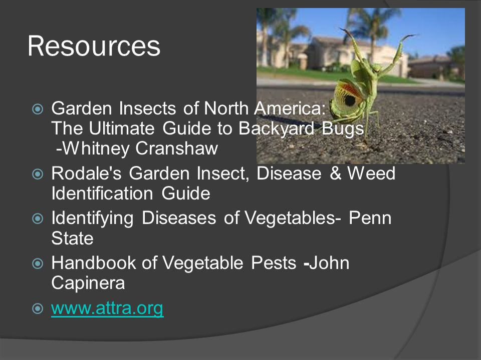 Resources Garden Insects of North America: The Ultimate Guide to Backyard Bugs -Whitney Cranshaw.