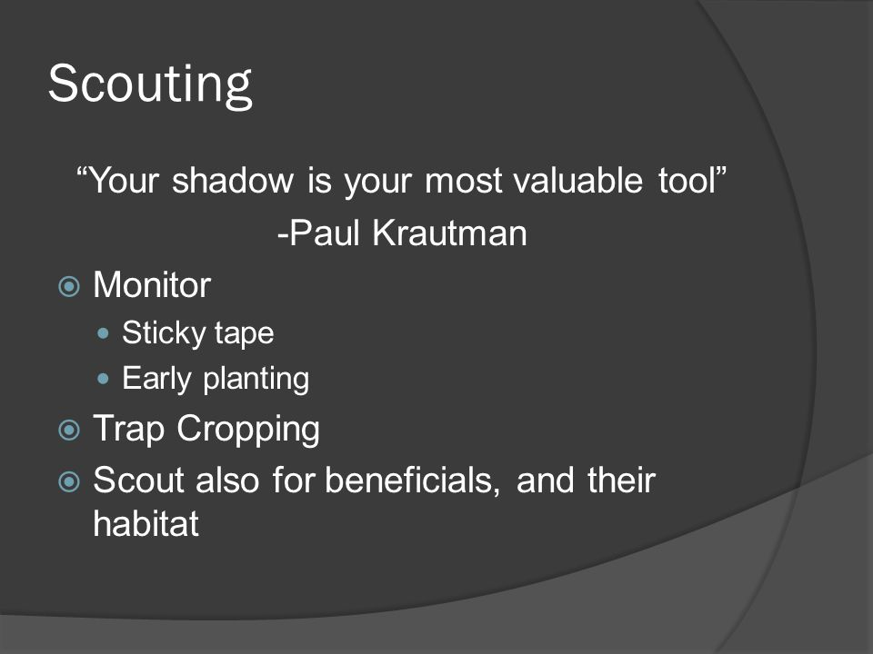 Your shadow is your most valuable tool