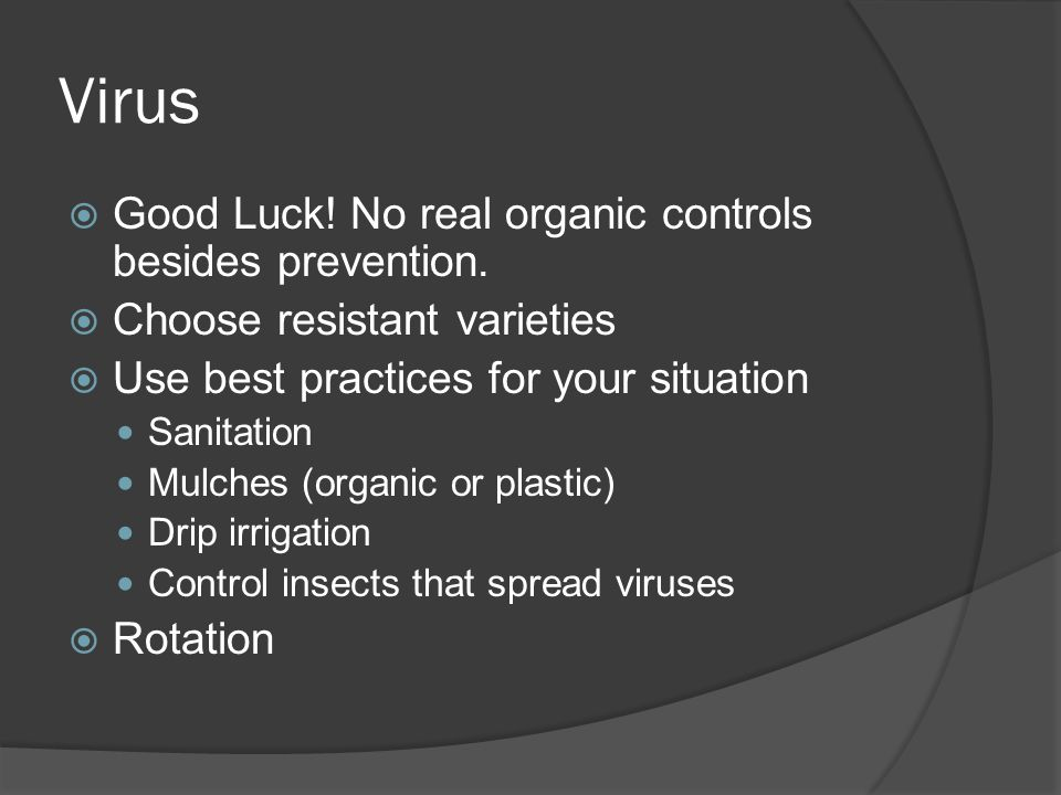 Virus Good Luck! No real organic controls besides prevention.