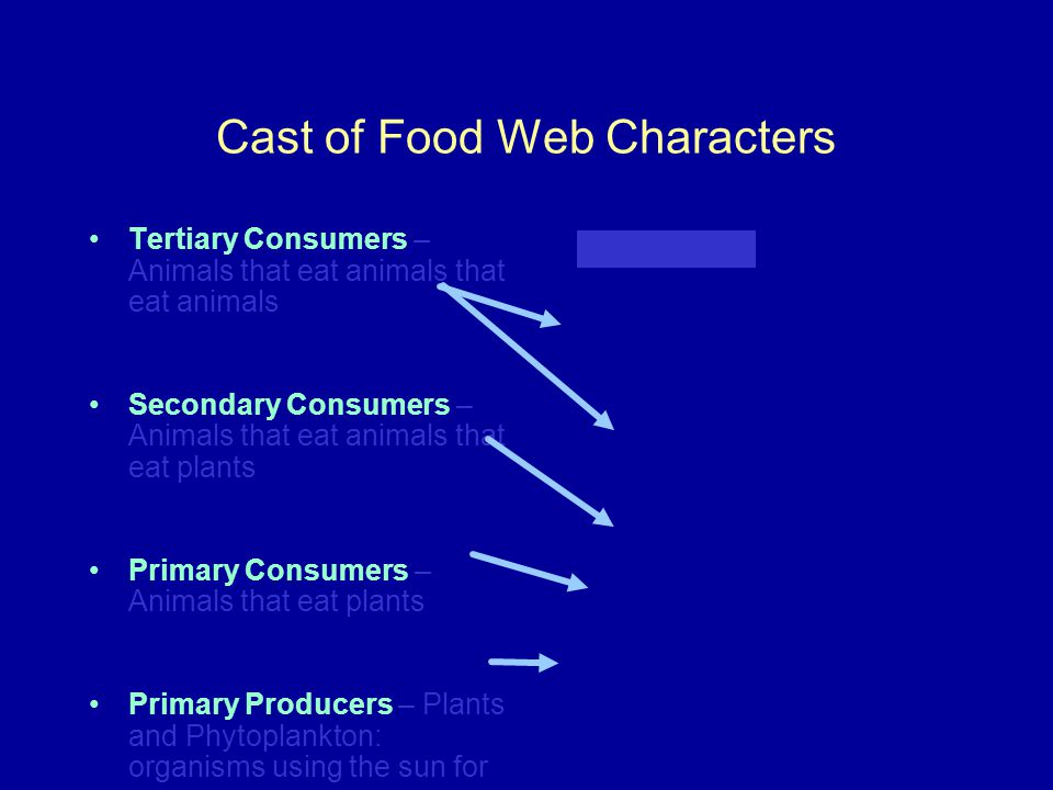 Cast of Food Web Characters