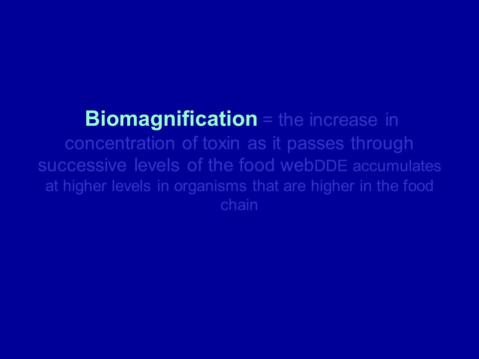 Biomagnification = the increase in concentration of toxin as it passes through successive levels of the food webDDE accumulates at higher levels in organisms that are higher in the food chain