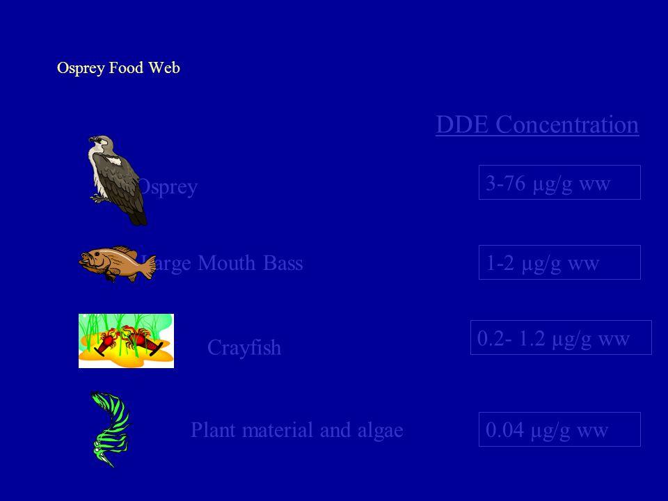 DDE Concentration Osprey 3-76 µg/g ww Large Mouth Bass 1-2 µg/g ww