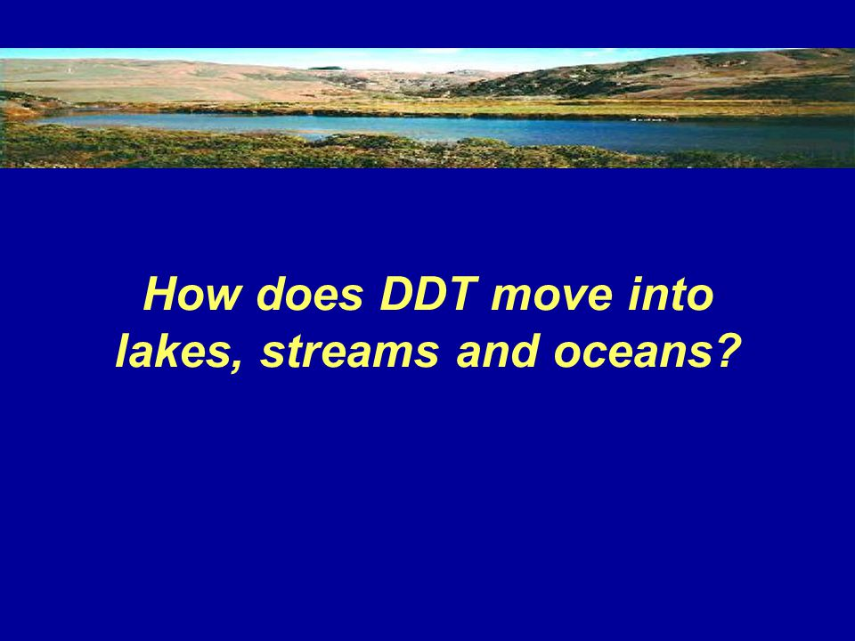 How does DDT move into lakes, streams and oceans