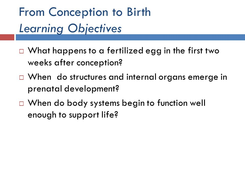 From Conception to Birth Learning Objectives