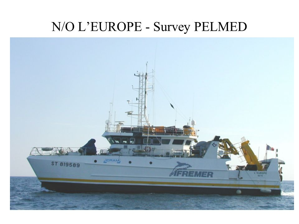 N/O L'EUROPE - Survey PELMED