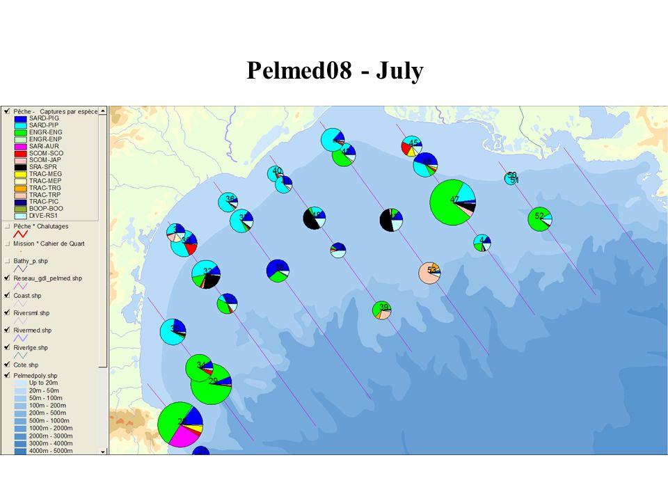 Pelmed08 - July