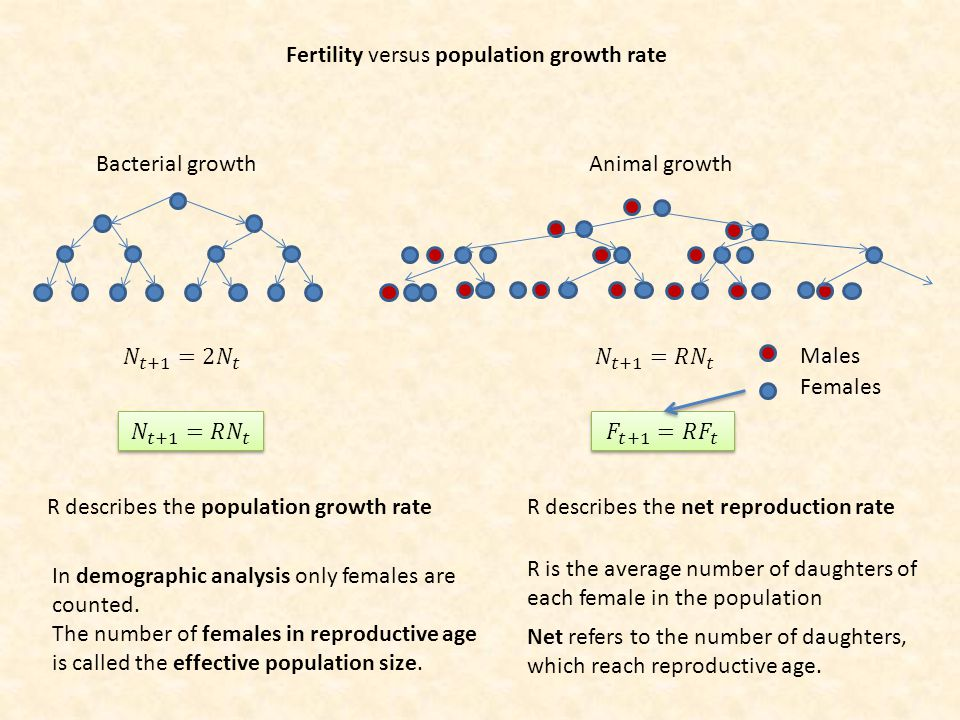 Fertility versus population growth rate