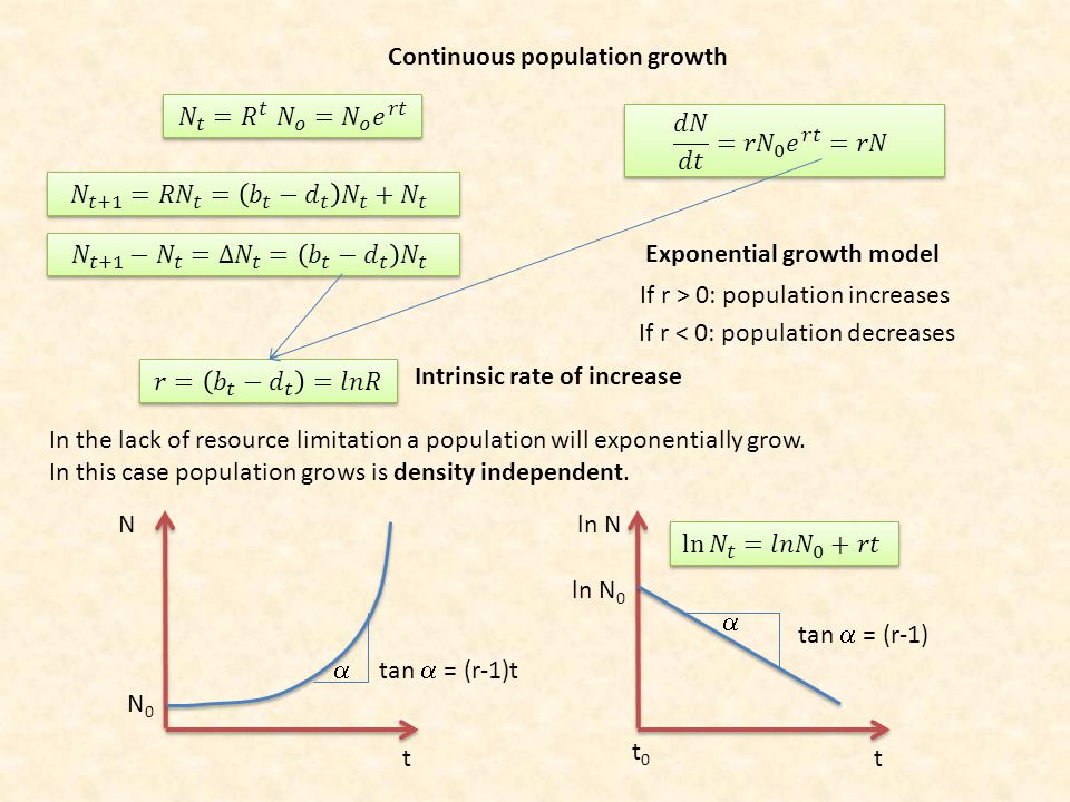 Continuous population growth Exponential growth model