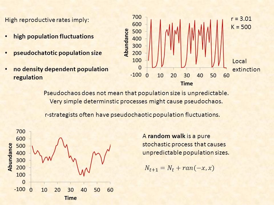 High reproductive rates imply: high population fluctuations