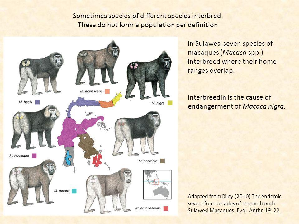 Sometimes species of different species interbred.