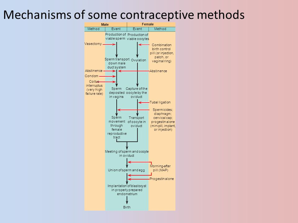 Mechanisms of some contraceptive methods