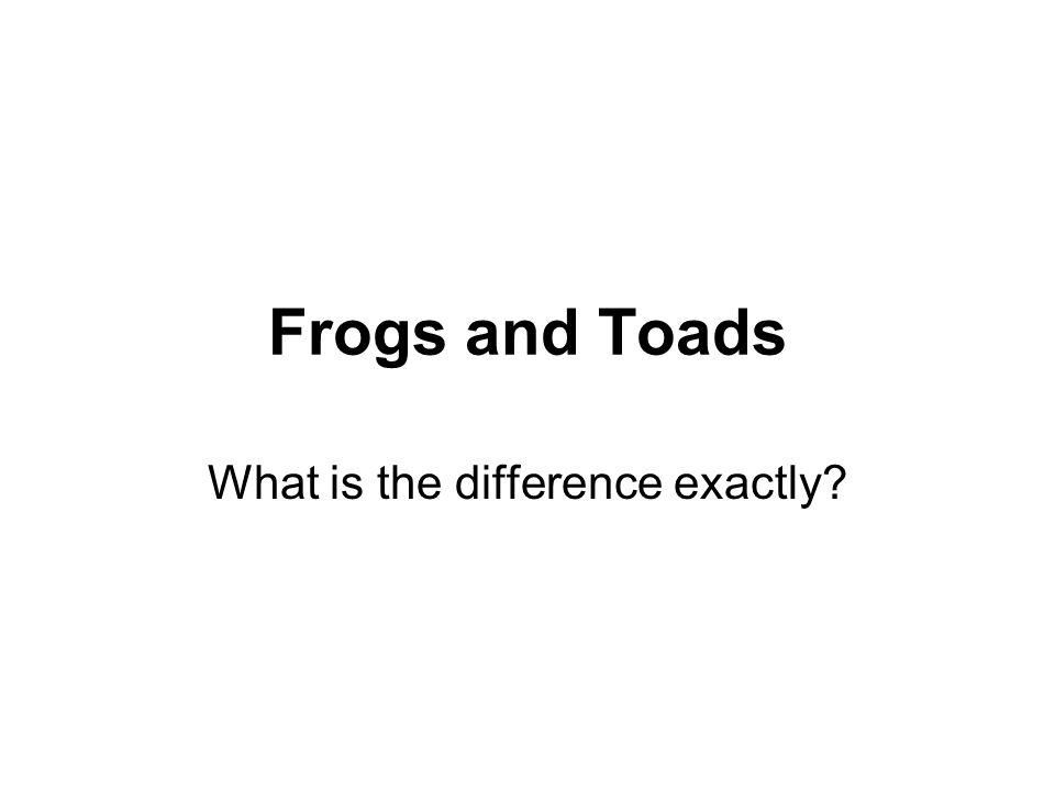 What is the difference exactly
