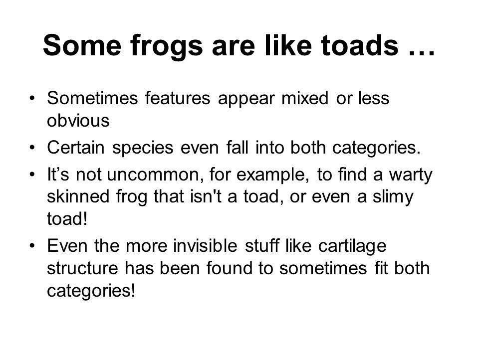 Some frogs are like toads …