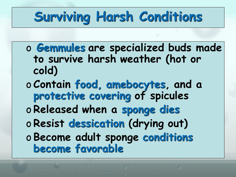 Surviving Harsh Conditions