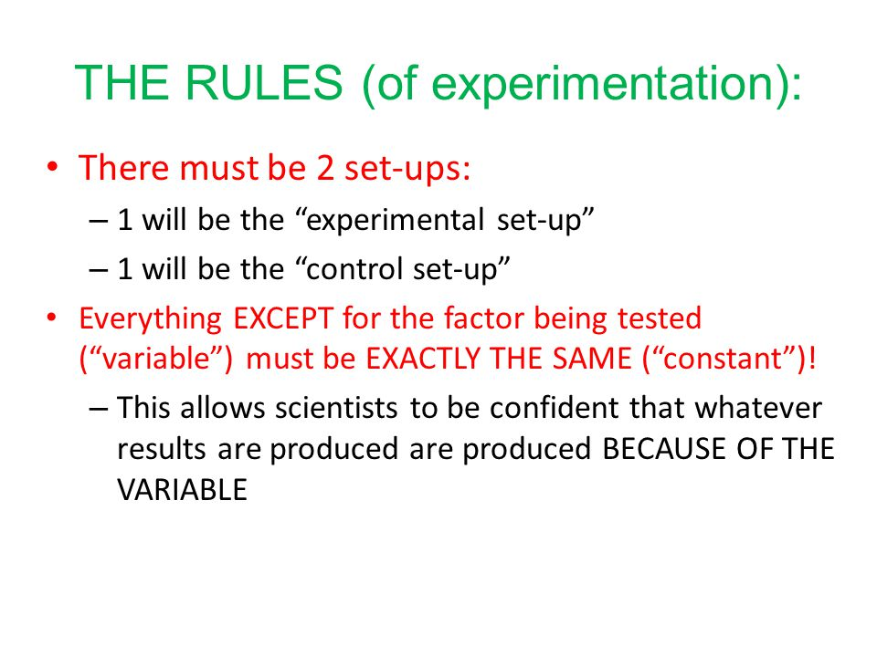 THE RULES (of experimentation):