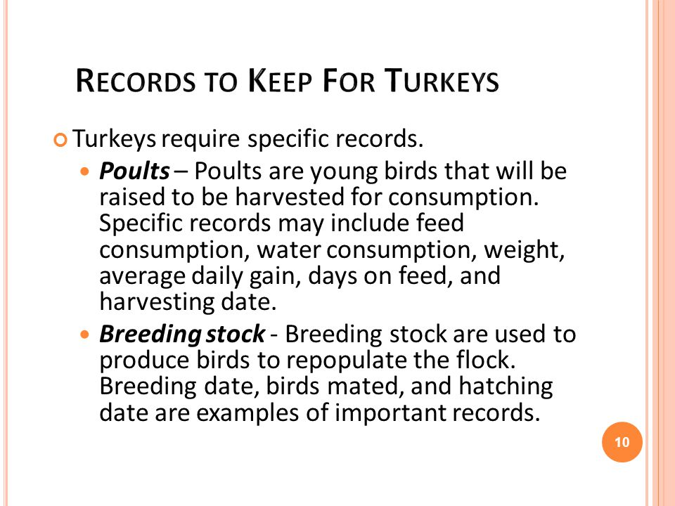 Records to Keep For Turkeys