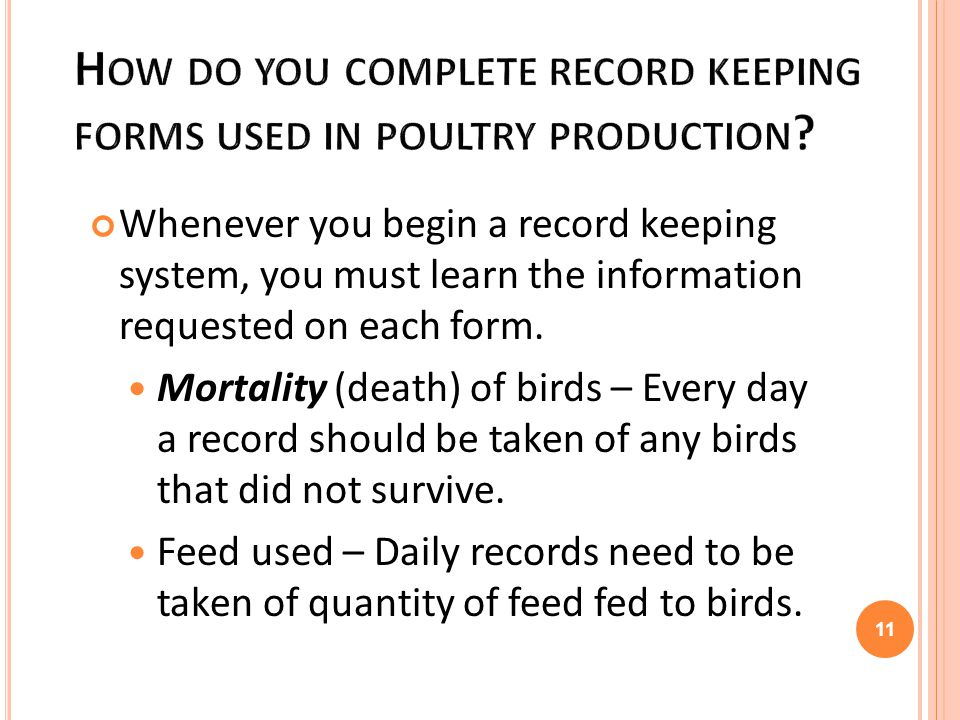 Lesson 3: Poultry Production and Record Keeping - ppt video online ...