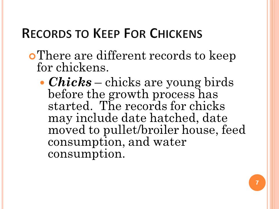 Records to Keep For Chickens