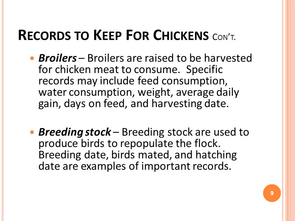 Records to Keep For Chickens Con't.