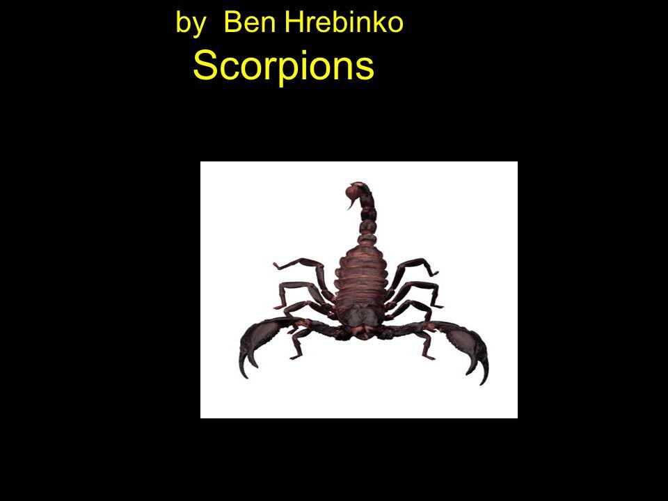 by Ben Hrebinko Scorpions