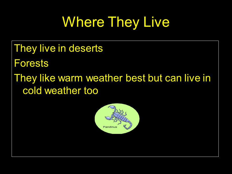 Where They Live They live in deserts Forests