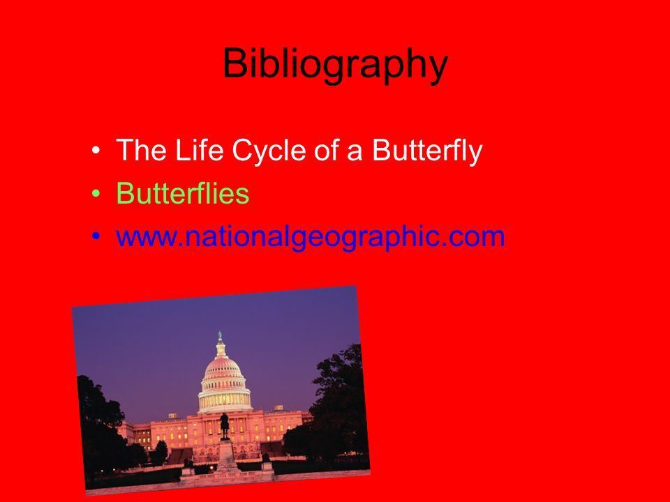 Bibliography The Life Cycle of a Butterfly Butterflies