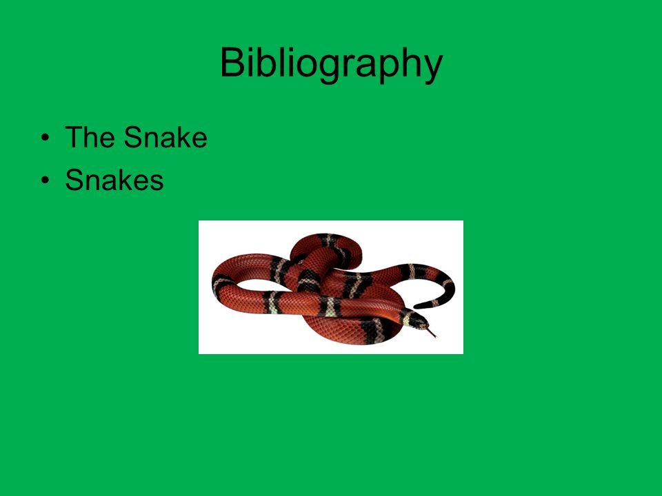 Bibliography The Snake Snakes