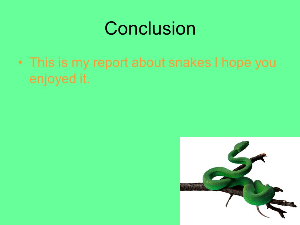 Conclusion This is my report about snakes I hope you enjoyed it.