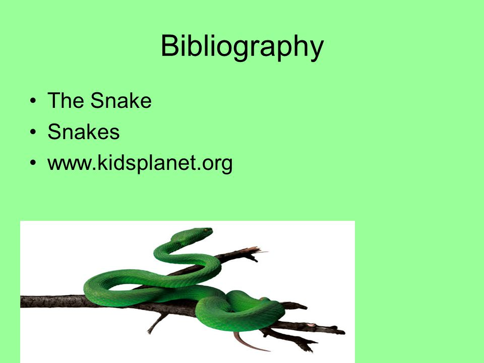 Bibliography The Snake Snakes www.kidsplanet.org