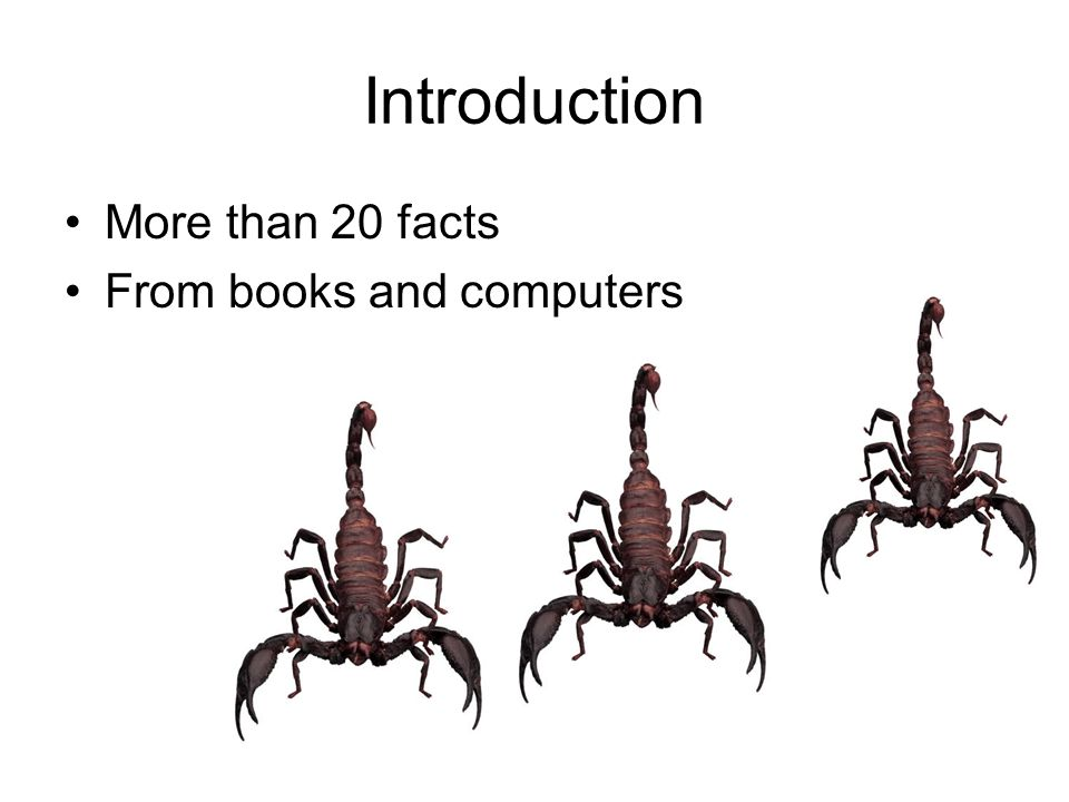 Introduction More than 20 facts From books and computers