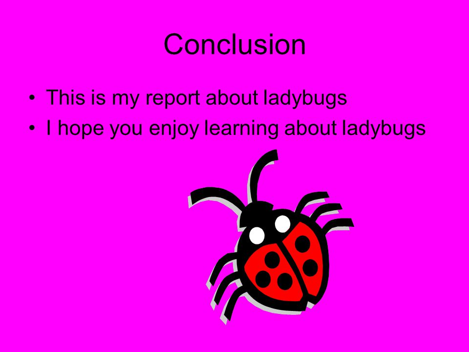Conclusion This is my report about ladybugs