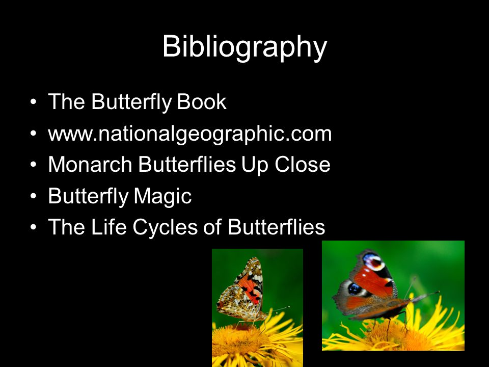 Bibliography The Butterfly Book www.nationalgeographic.com