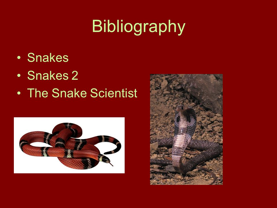 Bibliography Snakes Snakes 2 The Snake Scientist