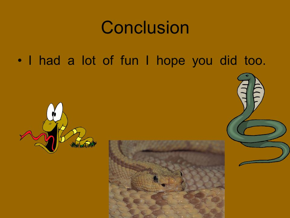 Conclusion I had a lot of fun I hope you did too.