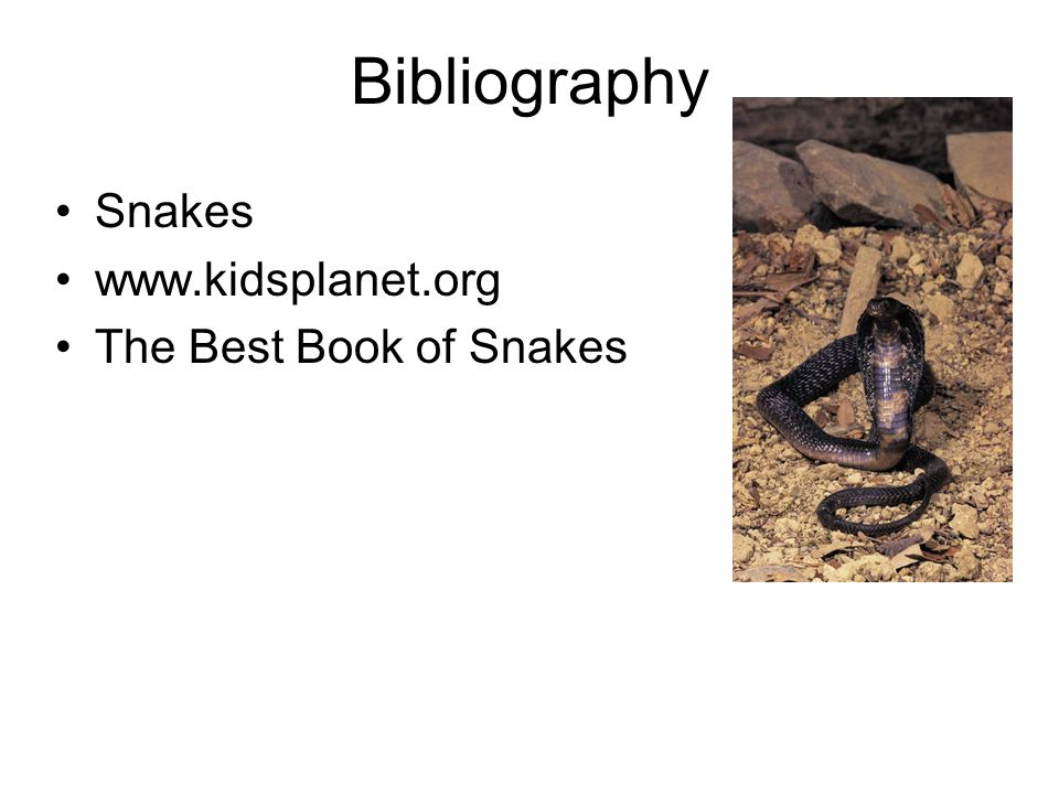 Bibliography Snakes www.kidsplanet.org The Best Book of Snakes