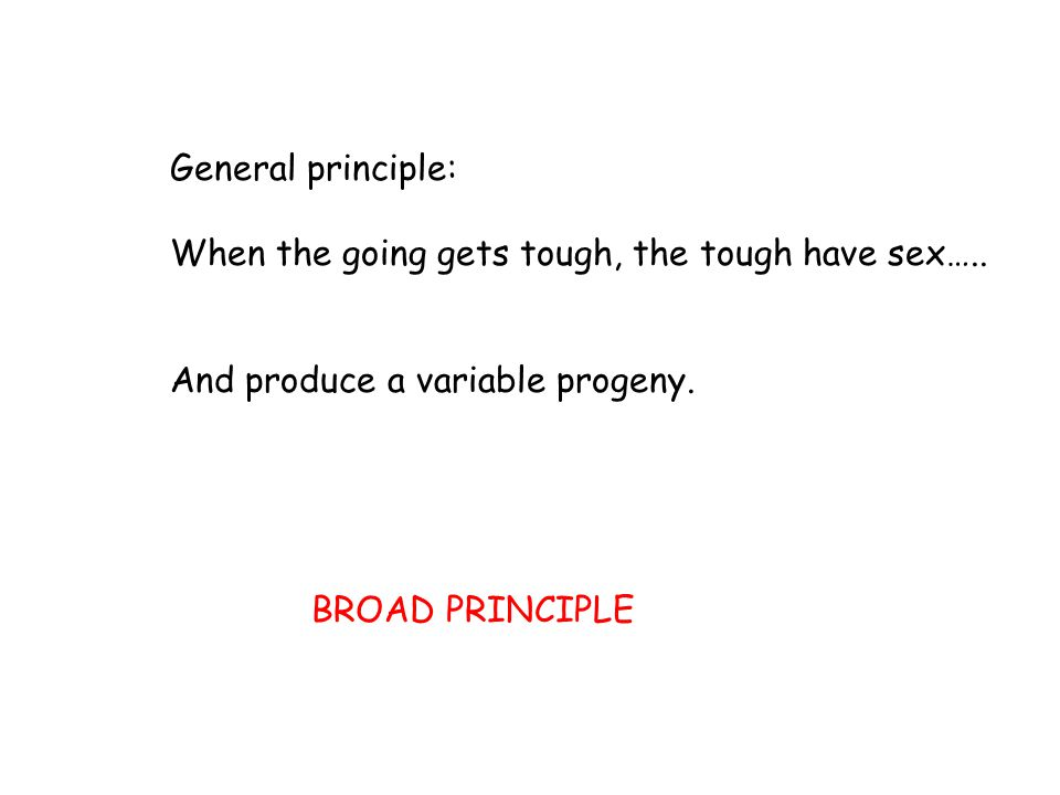 General principle: When the going gets tough, the tough have sex….. And produce a variable progeny.