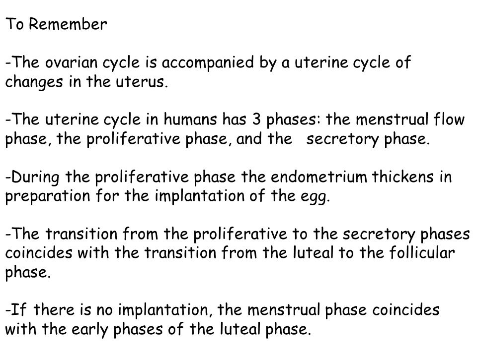 To Remember -The ovarian cycle is accompanied by a uterine cycle of changes in the uterus.
