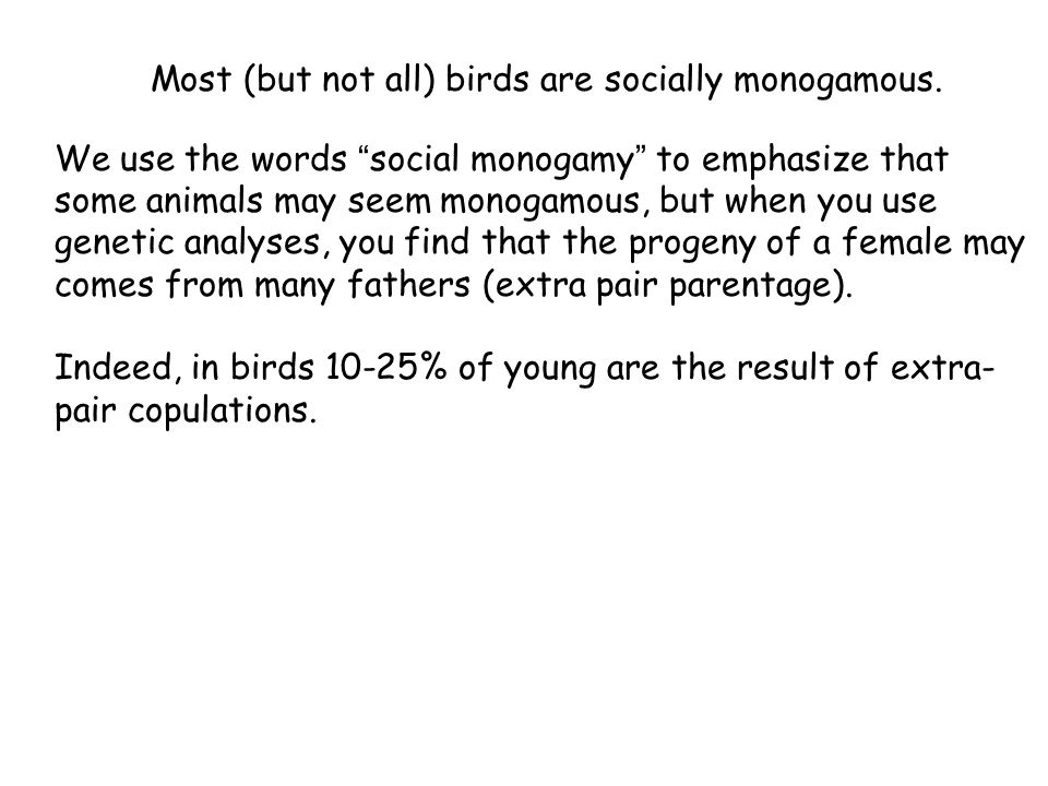 Most (but not all) birds are socially monogamous.