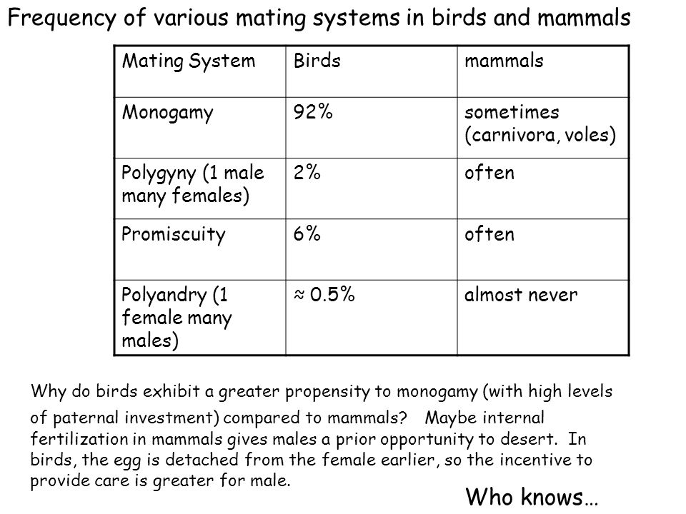 Frequency of various mating systems in birds and mammals