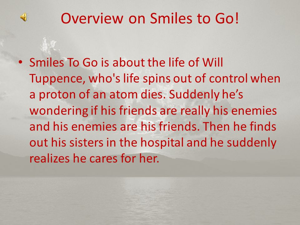 Overview on Smiles to Go!