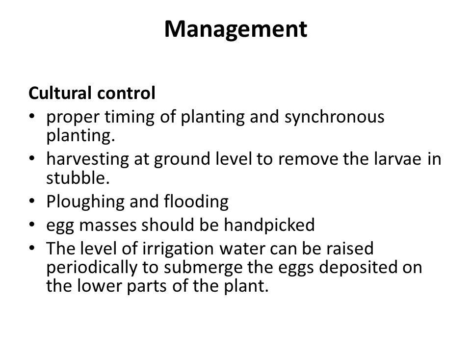 Management Cultural control