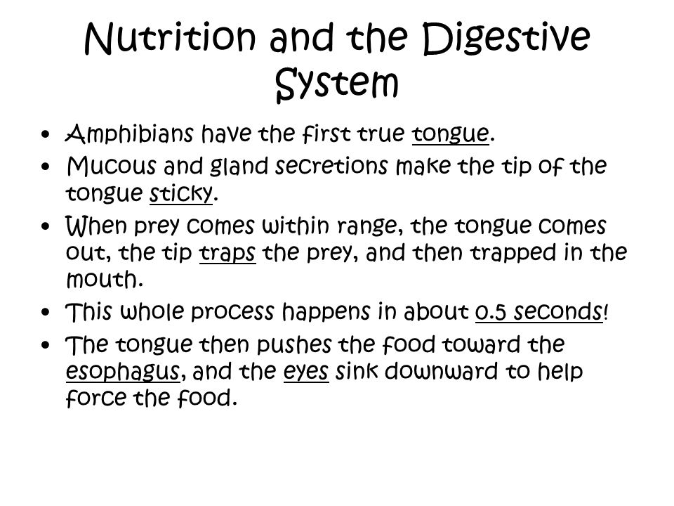 Nutrition and the Digestive System