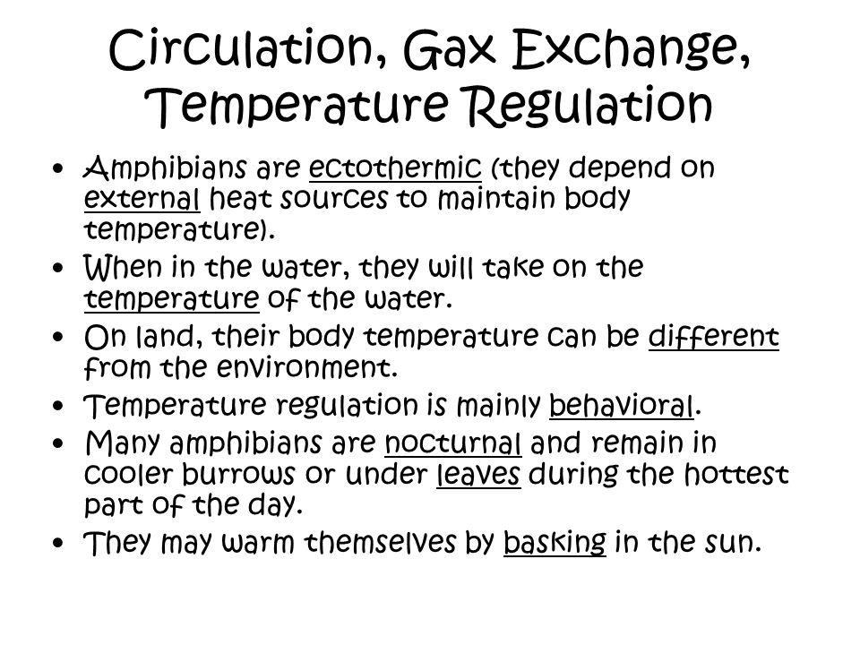 Circulation, Gax Exchange, Temperature Regulation