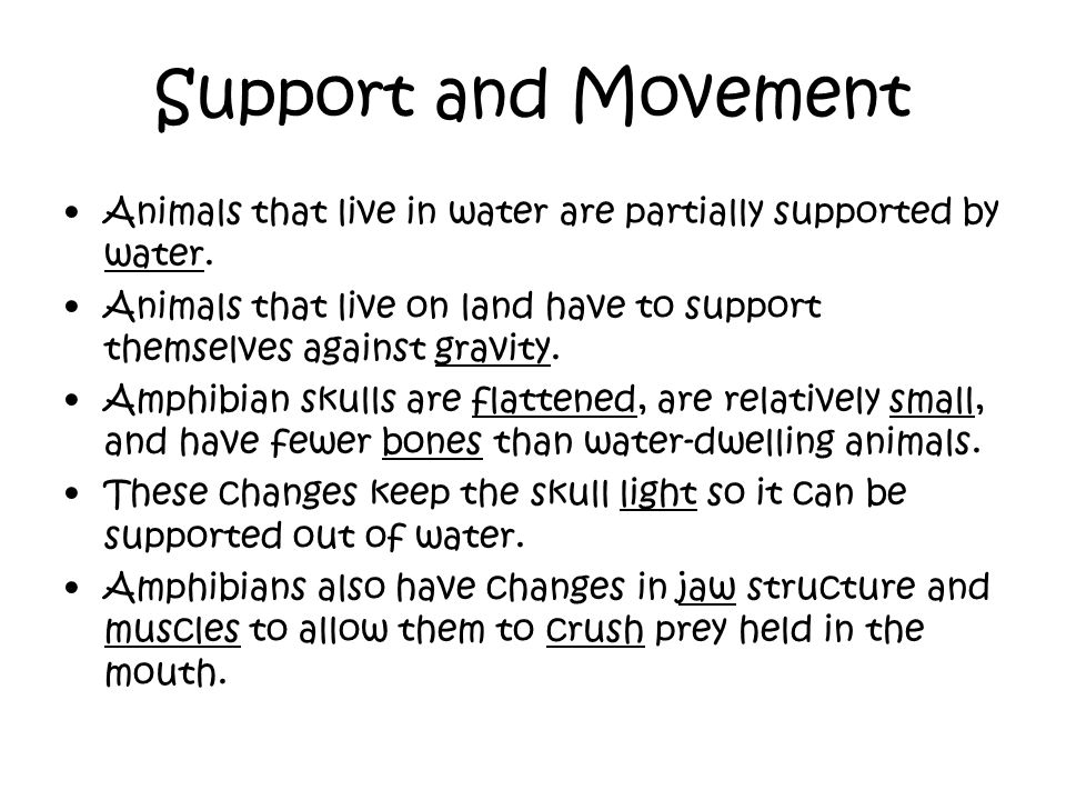 Support and Movement Animals that live in water are partially supported by water.
