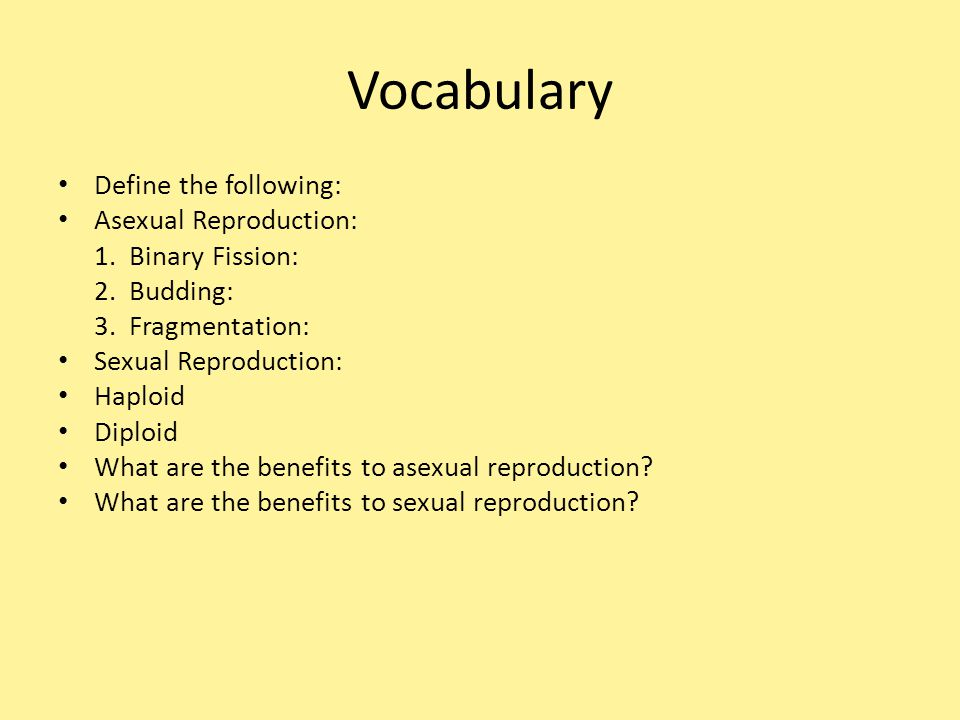 Vocabulary Define the following: Asexual Reproduction: