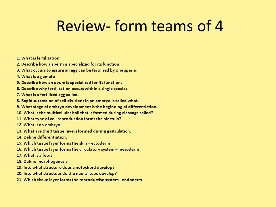 Review- form teams of 4