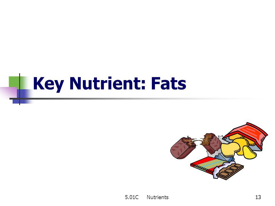Key Nutrient: Fats 5.01C Nutrients 13