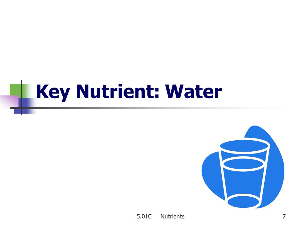 Key Nutrient: Water 5.01C Nutrients 7