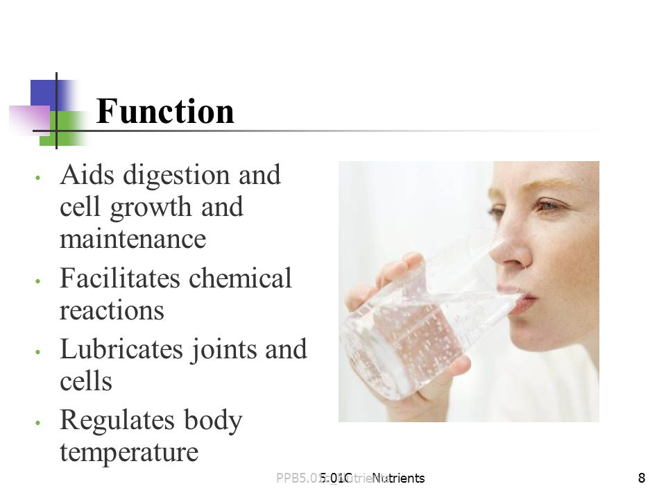 Function Aids digestion and cell growth and maintenance