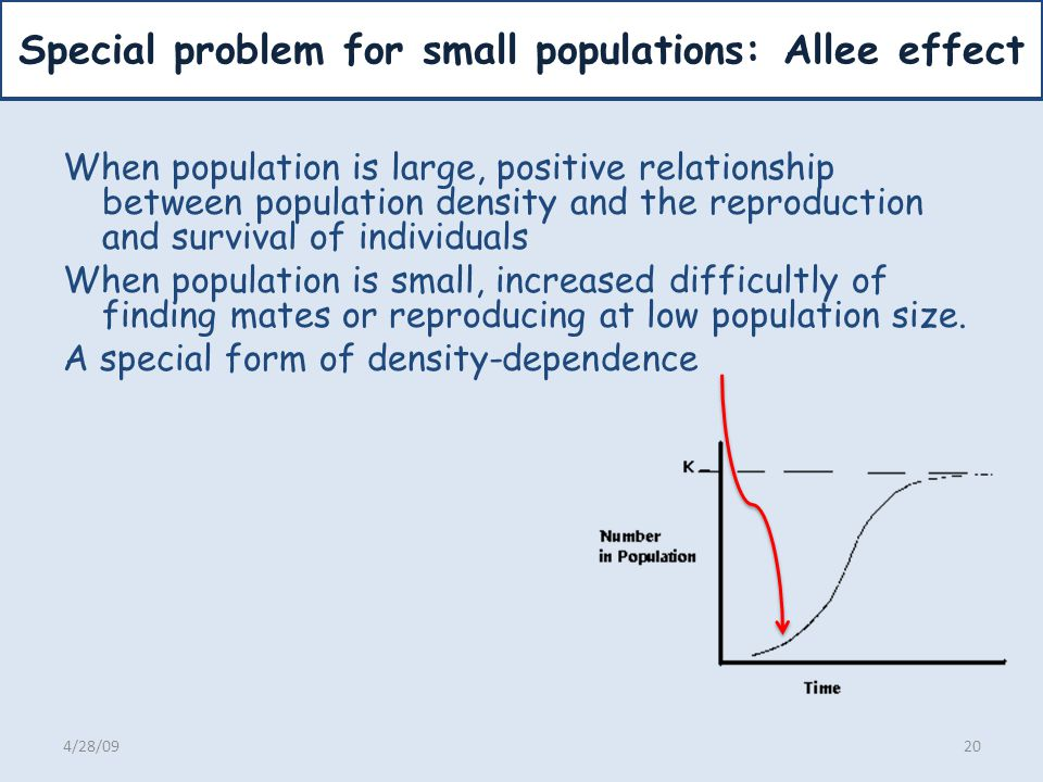 Special problem for small populations: Allee effect